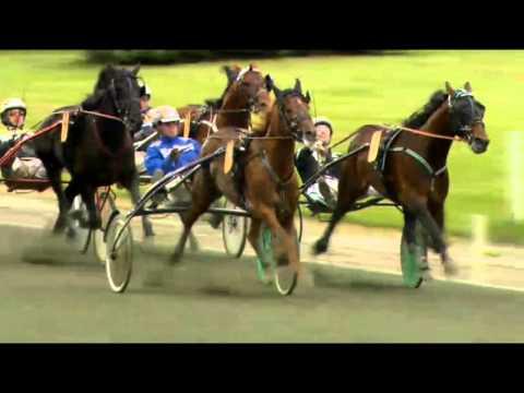 Vidéo de la course PMU COPENHAGEN CUP 2014