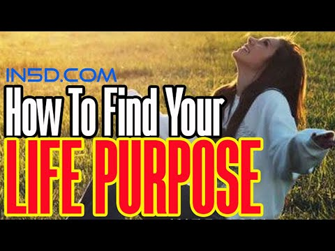 How To Find Your Life Purpose | in5d.com
