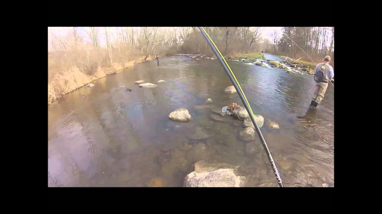 for Trout fishing nj