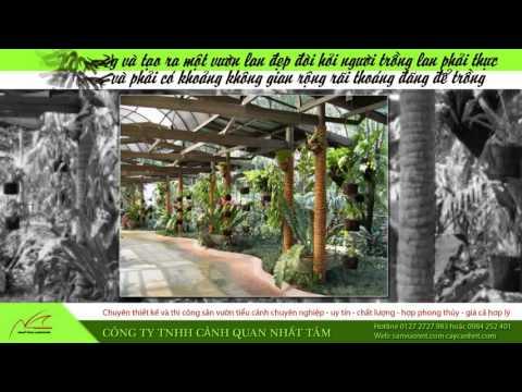 Thiết kế vườn lan đẹp - Nhất Tâm Landscape