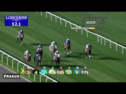 Vidéo de la course PMU DISTRICT ONE