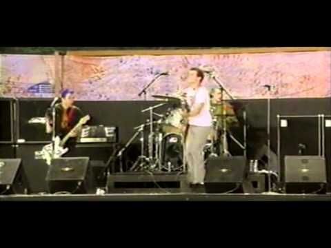 Green Day: Welcome to Paradise [Woodstock 1994 25th Anniversary HD]