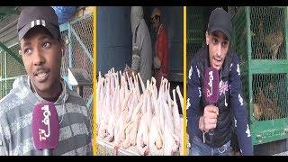بالفيديو..المغاربة مبقاوش قادرين يشريو الدجاج و مطيشة بسبب الغلاء   |   حصاد اليوم