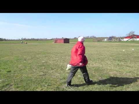 Useless clips from a VERY windy coursing day!
