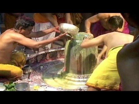 India celebrates colourful Holi festival - no comment