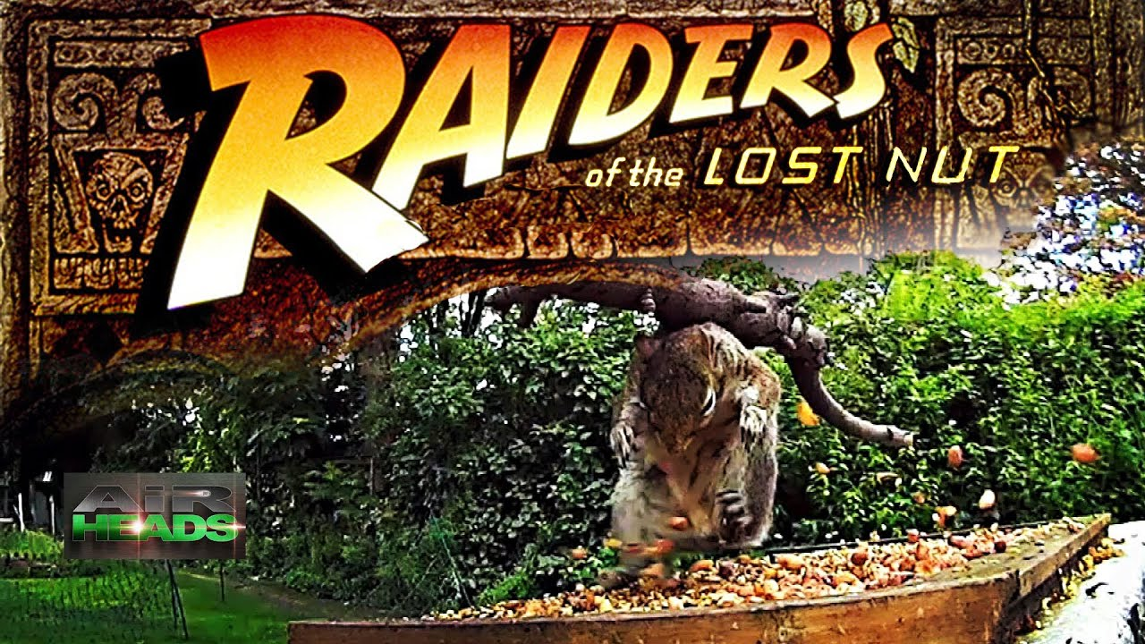 Airheads raiders of the lost nut youtube