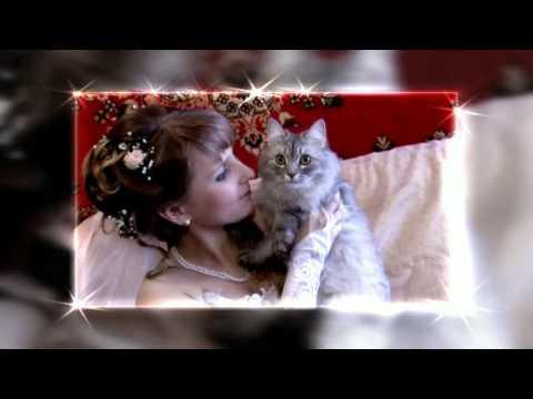 Сборы невесты. Фрагмент свадебного фильма. 2011г. Мария