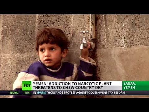 Chewing to Death: Yemeni drug addiction threatens to dry the country