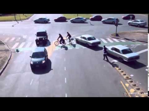 Вака изгледа совршениот сообраќај на раскрсница