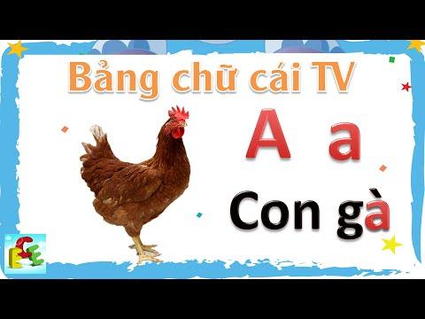 Dạy bé học bảng chữ cái tiếng Việt | dạy trẻ tập nói: bé tập đọc chữ cái abc | Giáo dục trẻ em ECE 1