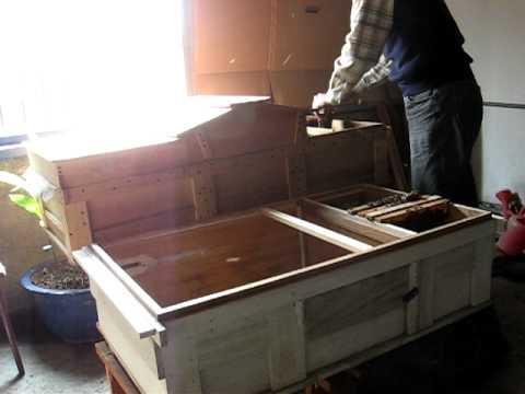 養蜜蜂-換箱