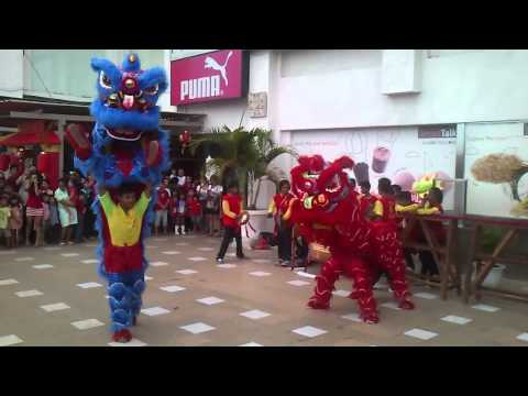 Barongsai Live Show in Bali Discovery Mall