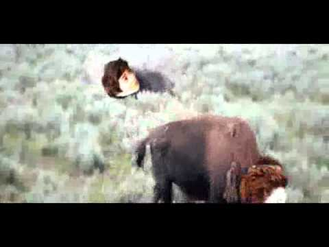 "10 MINUTES OF EXO ""ROLL LIKE A BUFFALO""~"