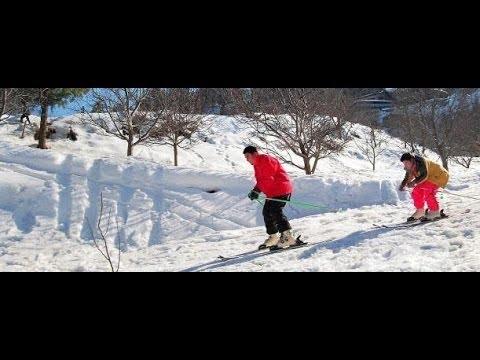 Gulmarg, Kashmir in Winter 2013.Kashmir Trip/Honeymoon Package.