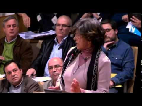 2014/03/24 - Zélia Correia sobre o Regulamento de espaços verdes municipal e protecção da árvore