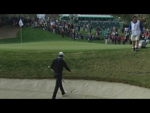 Tiger Woods' bunker shot rolls to within inches at World Challenge