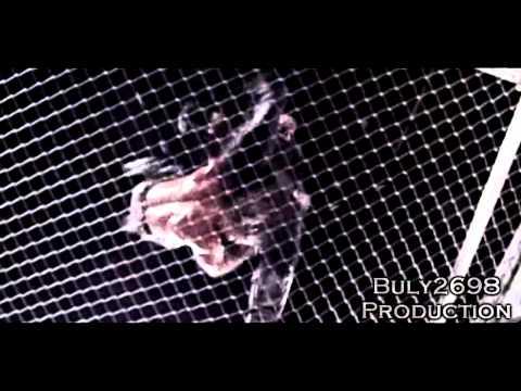 Bad Blood 1997 - Shawn Michaels vs The Undertaker Highlights HD