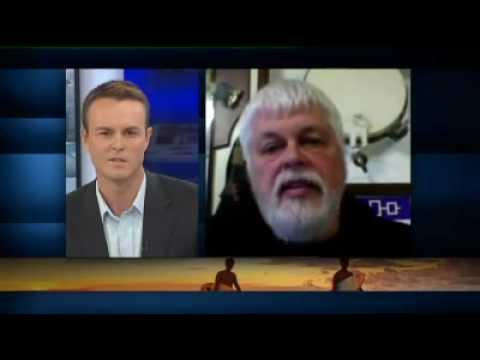 Paul Watson on ABC News 24
