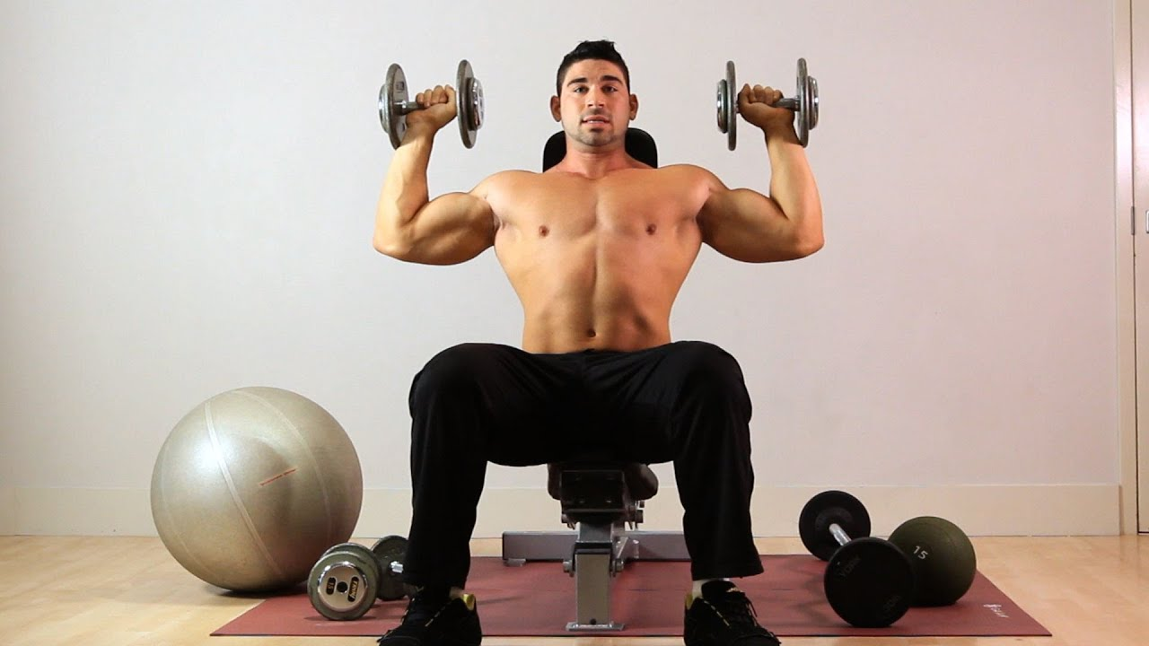 How to Do Seated Overhead Dumbbell Press  Arm Workout - YouTube