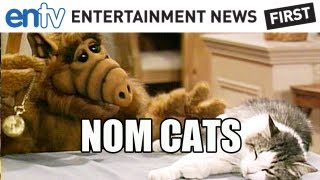 "ALF Movie Coming From ""Smurfs"" Producer, Expected 2014"