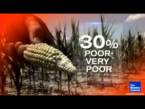 America Is Facing a Food Crisis ~ 2012 American Drought ~