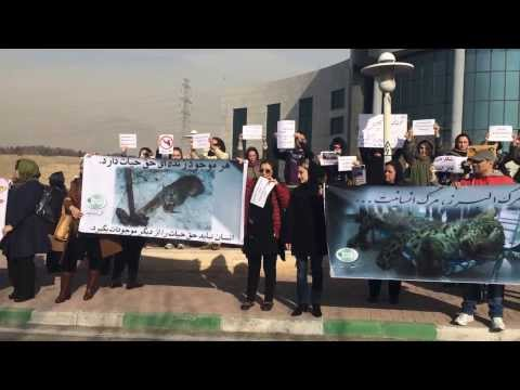 ANTI KILLING LEOPARDS IN IRAN GATHERING.
