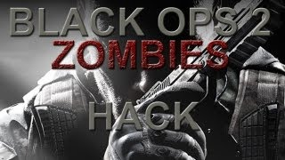 Black Ops 2 Zombies Hack PC