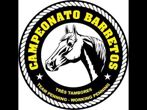 26/06/2014 - CAMPEONATO BARRETOS 3 TAMBORES E TEAM PENNING