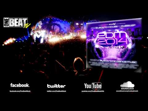 Electronic Dance Music 2013 - 2014 / Track List (Free Download)