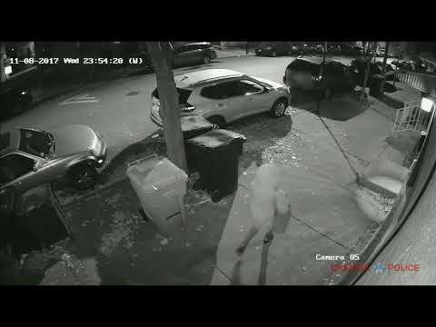 芝加哥华埠连爆持枪行抢 警公布惊悚作案影片(视)
