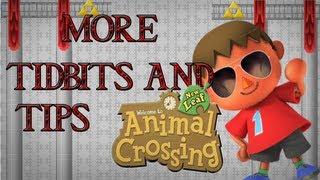 Tidbits & Tips: Animal Crossing New Leaf: Villager House