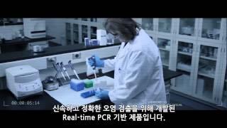 세포 배양 오염물: 마이코 플라즈마와 바이러스