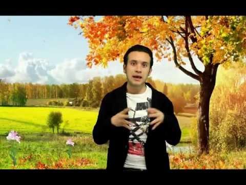 El árbol de la vida ( the tree of life ) - Crítica - Lo Chido Gacho y Pirata - Nominada Oscar 2012