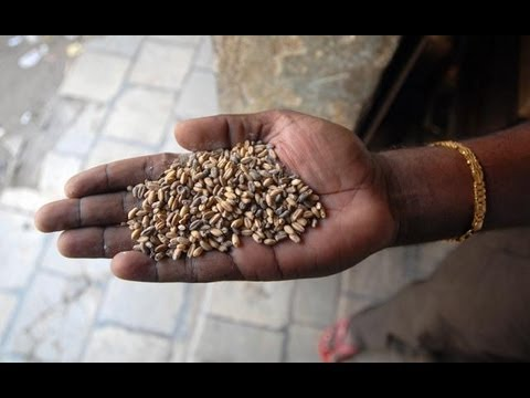 The Stream - India's Food Security Bill