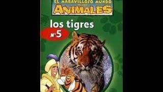 El Maravilloso Mundo De Los Animales De Disney, Los Tigres