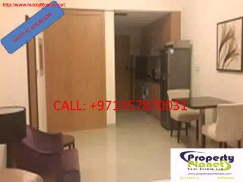 Lincoln Park Studio   1 Bhk