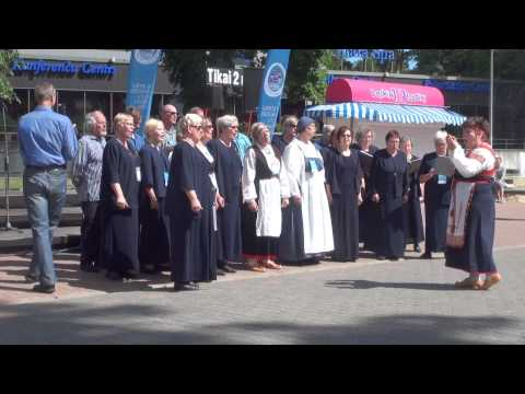00171 VIII ZIEMEĻU UN BALTIJAS VALSTU DZIESMU SVĒTKI,  Koru koncerti Jomas ielā, Majoros 27.06.2015