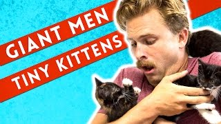 Manly Men Meet Tiny Kittens