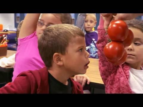 Шокантно: Денешните деца во западните земји не знаат што е тоа домат а што компир!