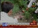 Bhroon Hatya