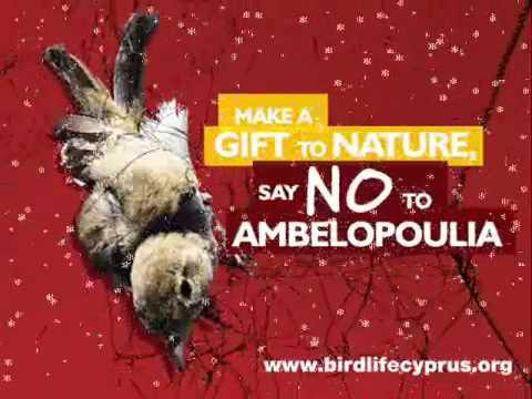 Cyprus bird trapping - BirdLife Cyprus' radio spot on the profitable business of bird trapping
