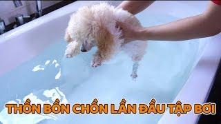 Lần Đầu Thồn Tập Bơi Trong Bồn Tắm