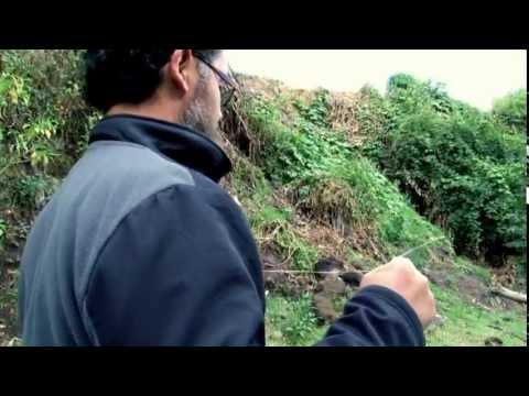 Radiestesia para buscar agua subterránea