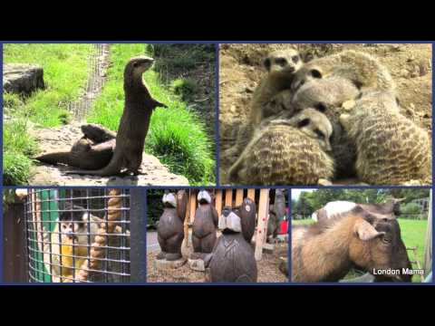 Battersesa park children's zoo Clapham London