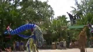 [Kareebu Jungala @ Busch Gardens] Video