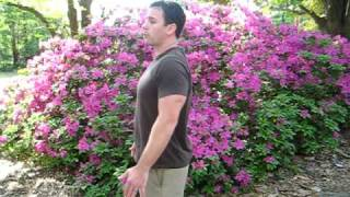 Exercises To Improve Posture Quickly And Easily