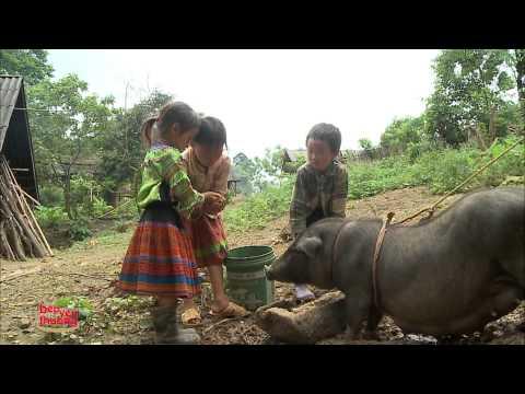 Tập 27 - Bếp Yêu Thương 2014 - Bếp ăn từ thiện Trường tiểu học Nà Khương, Hà Giang