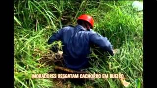 Ap�s v�rias tentativas, bombeiros conseguem resgatar cachorro em bueiro