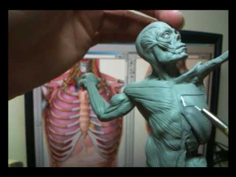 Super Sculpey Ecorche Figurine Sculpting-Part 29/34