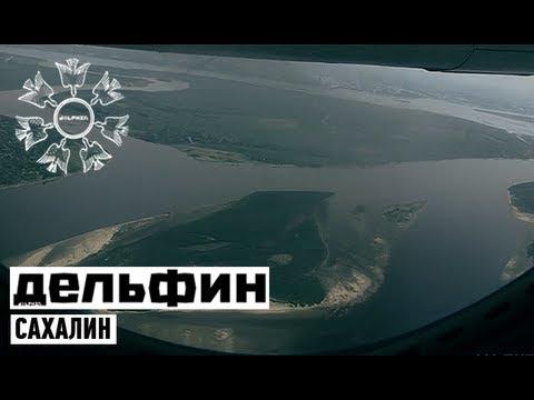 Смотреть клип Дельфин - Сахалин